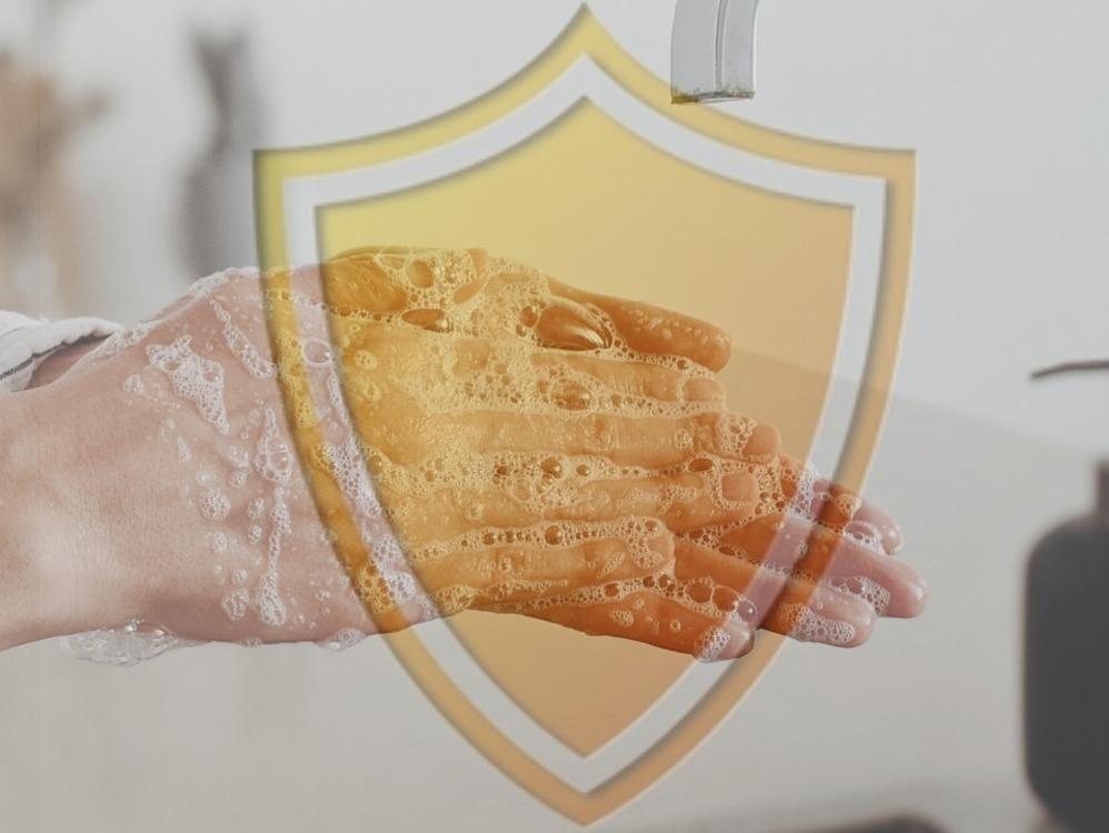 Imagen de portada El lavado de manos, uno de nuestros principales escudos